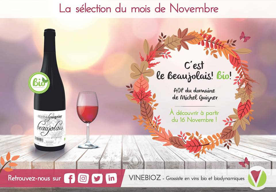 VINEBIOZ - Beaujolais 2017