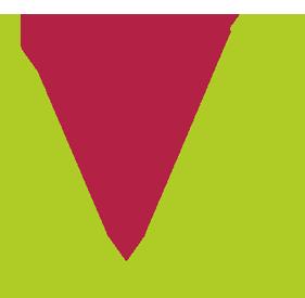 VINEBIOZ - Vin Bio